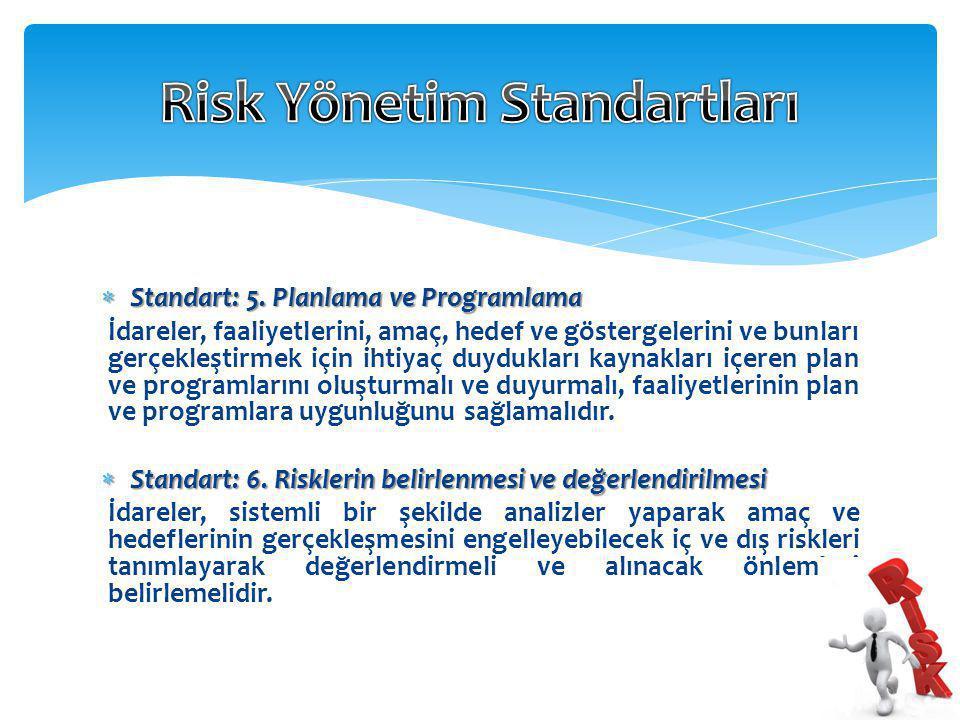 Risk Yönetim Standartları