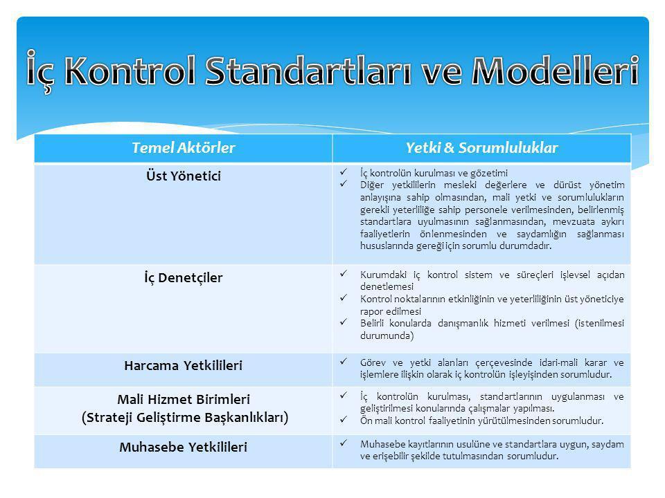 İç Kontrol Standartları ve Modelleri