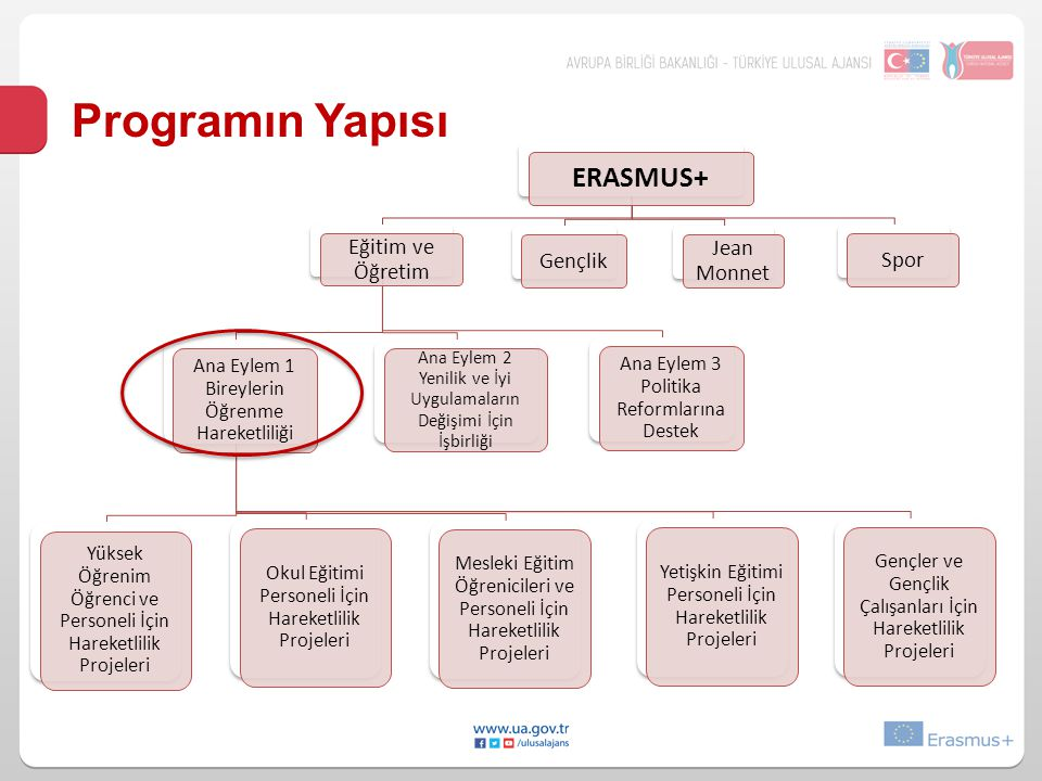 Programın Yapısı ERASMUS+ Eğitim ve Öğretim Jean Monnet Gençlik Spor