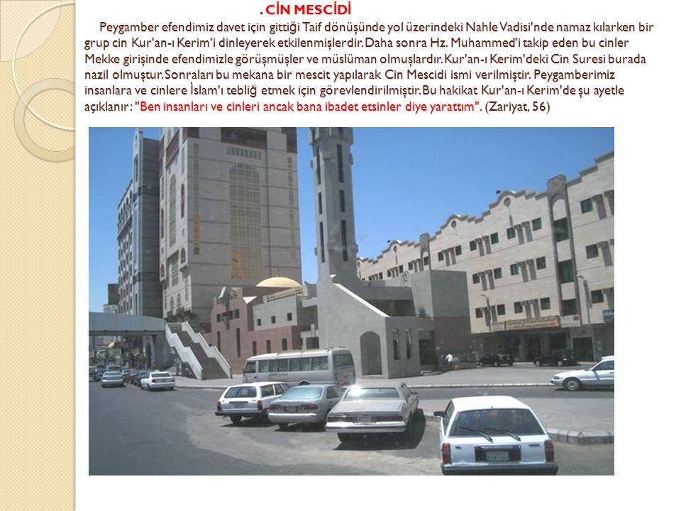 CİN MESCİDİ Peygamber efendimiz davet için gittiği Taif dönüşünde yol üzerindeki Nahle Vadisi nde namaz kılarken bir grup cin Kur an-ı Kerim i dinleyerek etkilenmişlerdir.