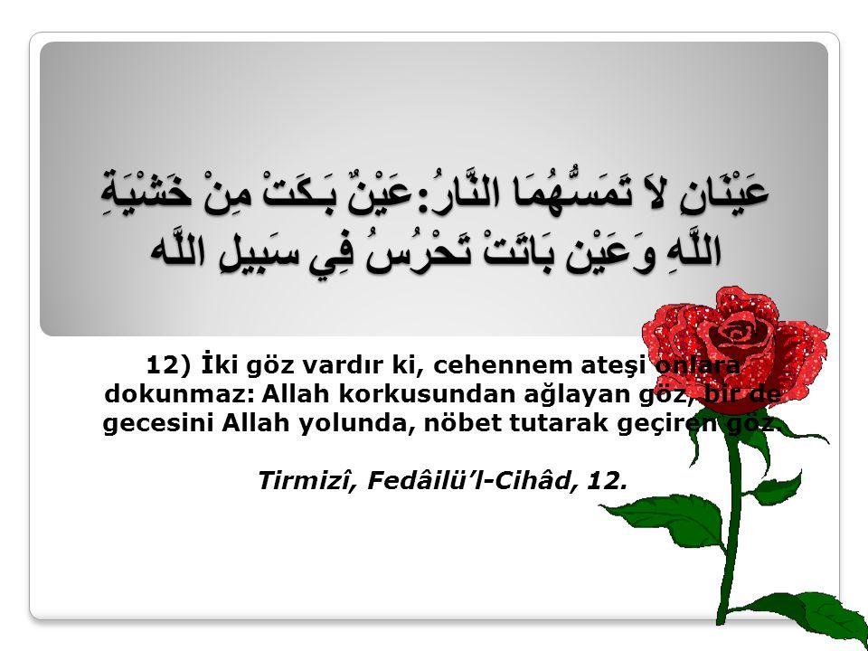 Tirmizî, Fedâilü'l-Cihâd, 12.