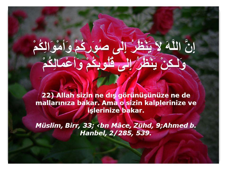 Müslim, Birr, 33; ‹bn Mâce, Zühd, 9;Ahmed b. Hanbel, 2/285, 539.