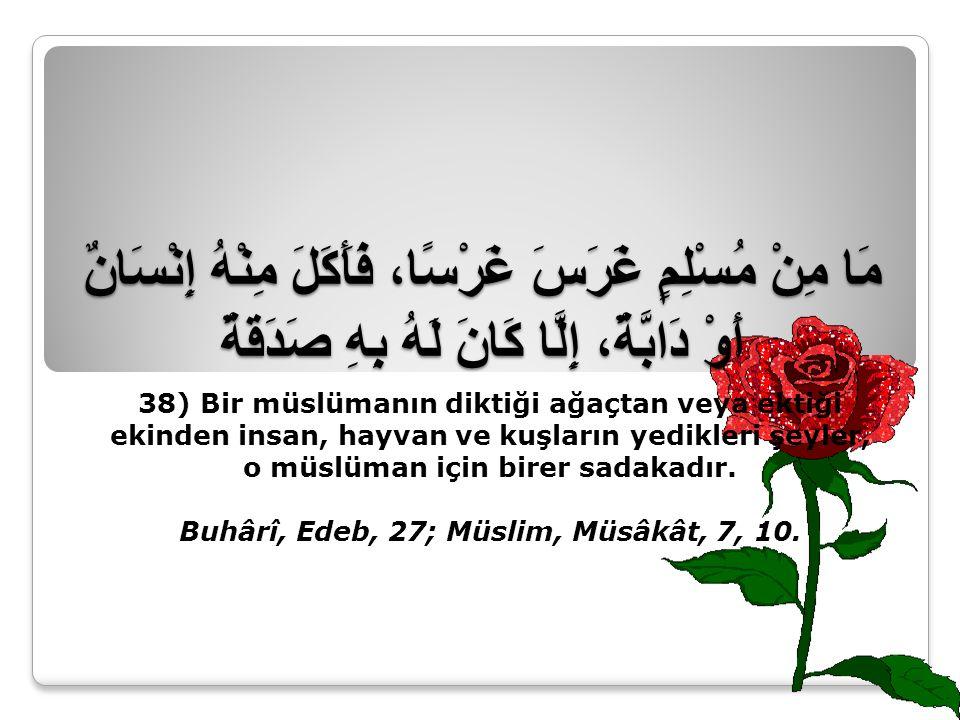 Buhârî, Edeb, 27; Müslim, Müsâkât, 7, 10.