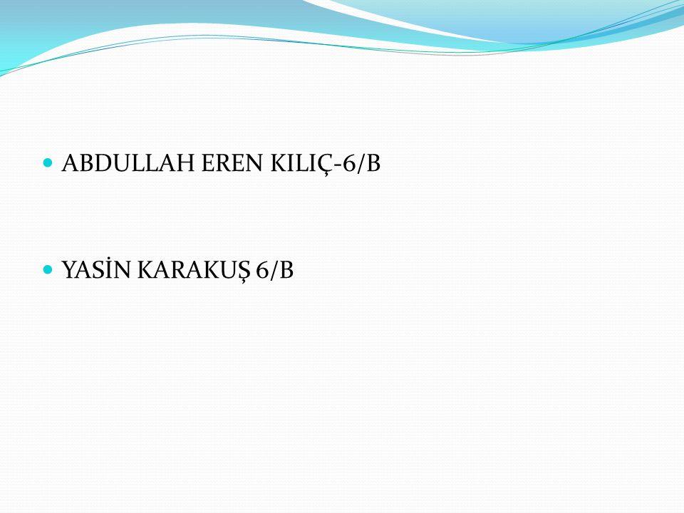 ABDULLAH EREN KILIÇ-6/B