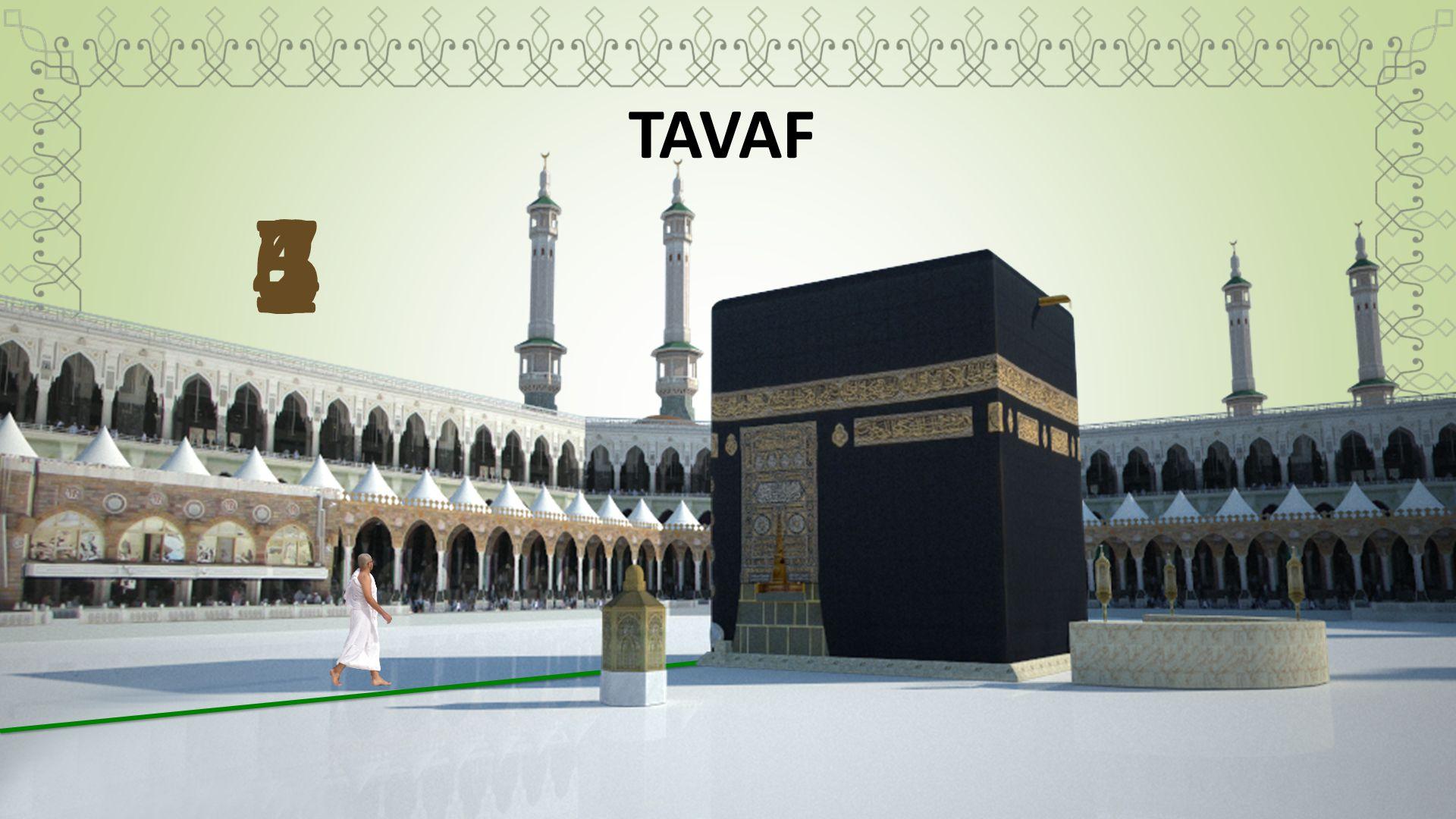 TAVAF 6 7 5 4 2 3 1