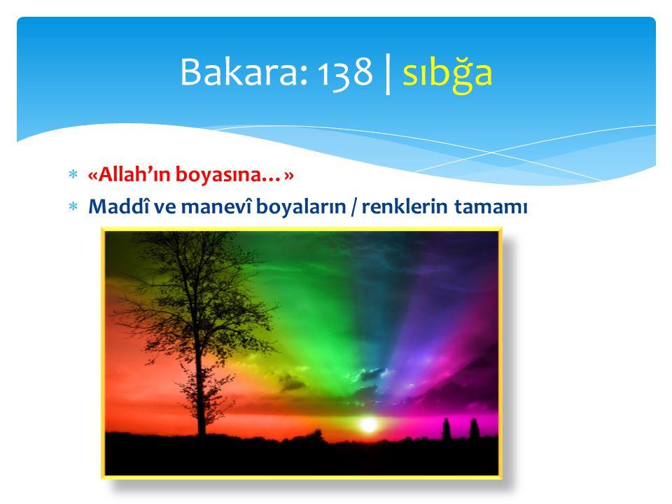 Bakara: 138 | sıbğa «Allah'ın boyasına…»