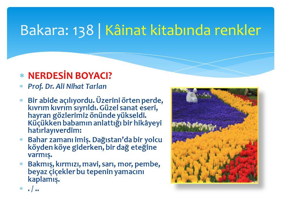 Bakara: 138 | Kâinat kitabında renkler