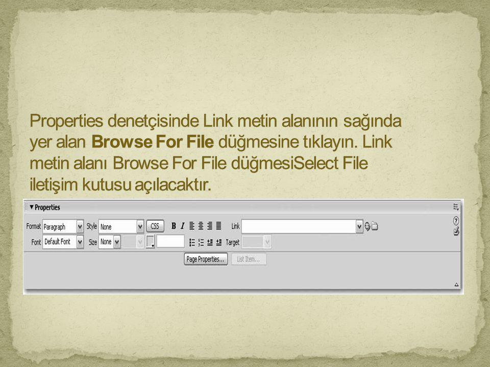 Properties denetçisinde Link metin alanının sağında yer alan Browse For File düğmesine tıklayın.