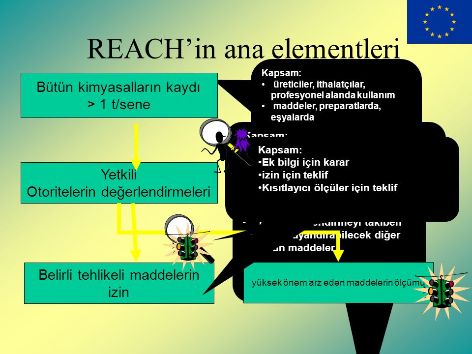 REACH'in ana elementleri