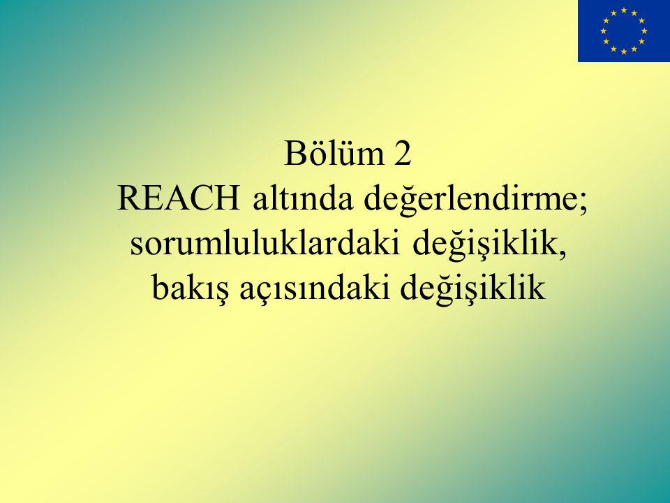 Bölüm 2 REACH altında değerlendirme; sorumluluklardaki değişiklik, bakış açısındaki değişiklik