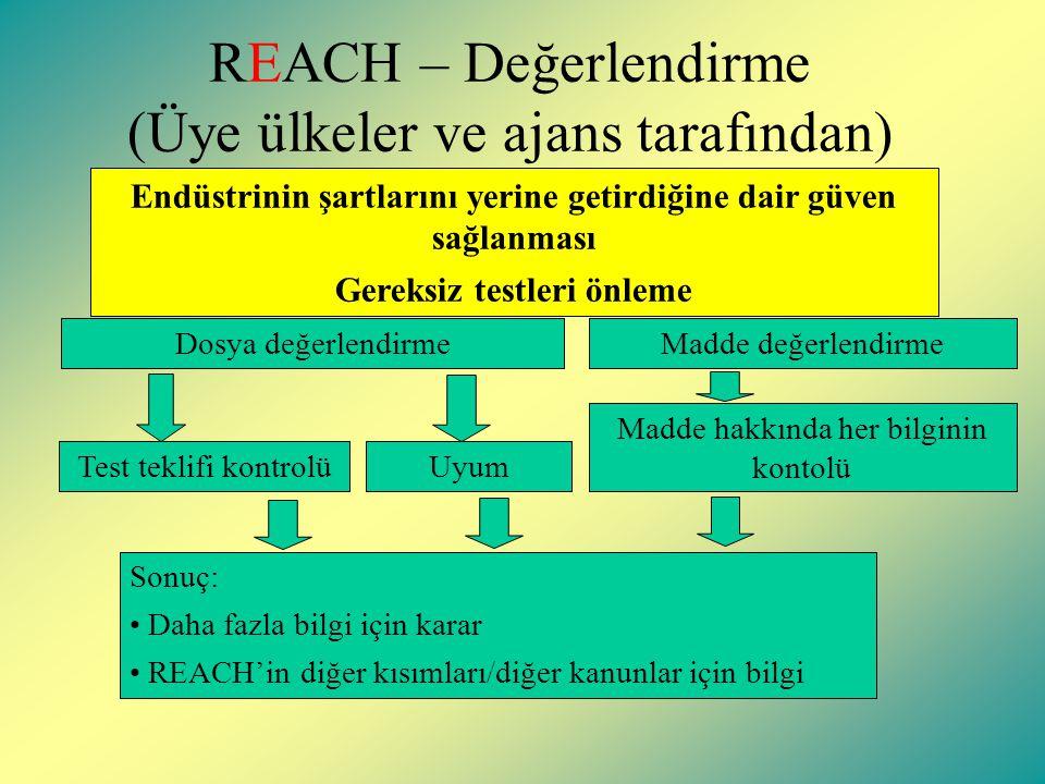 REACH – Değerlendirme (Üye ülkeler ve ajans tarafından)
