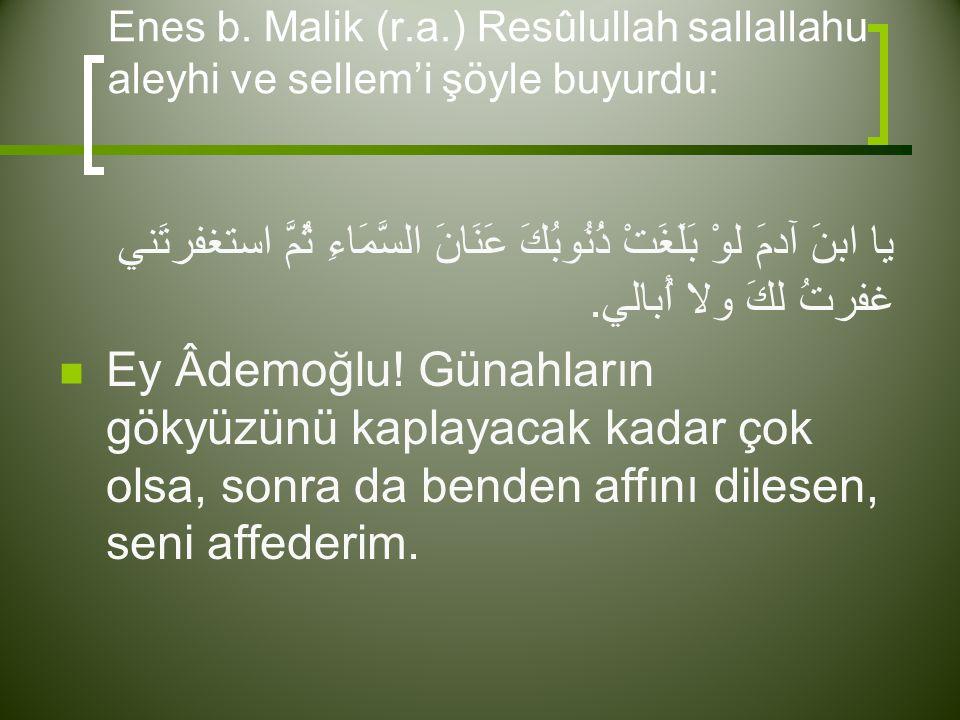 Enes b. Malik (r.a.) Resûlullah sallallahu aleyhi ve sellem'i şöyle buyurdu: