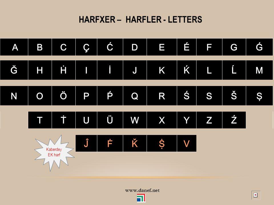 HARFXER – HARFLER - LETTERS