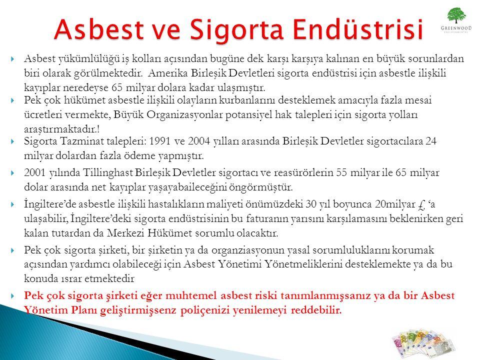 Asbest ve Sigorta Endüstrisi