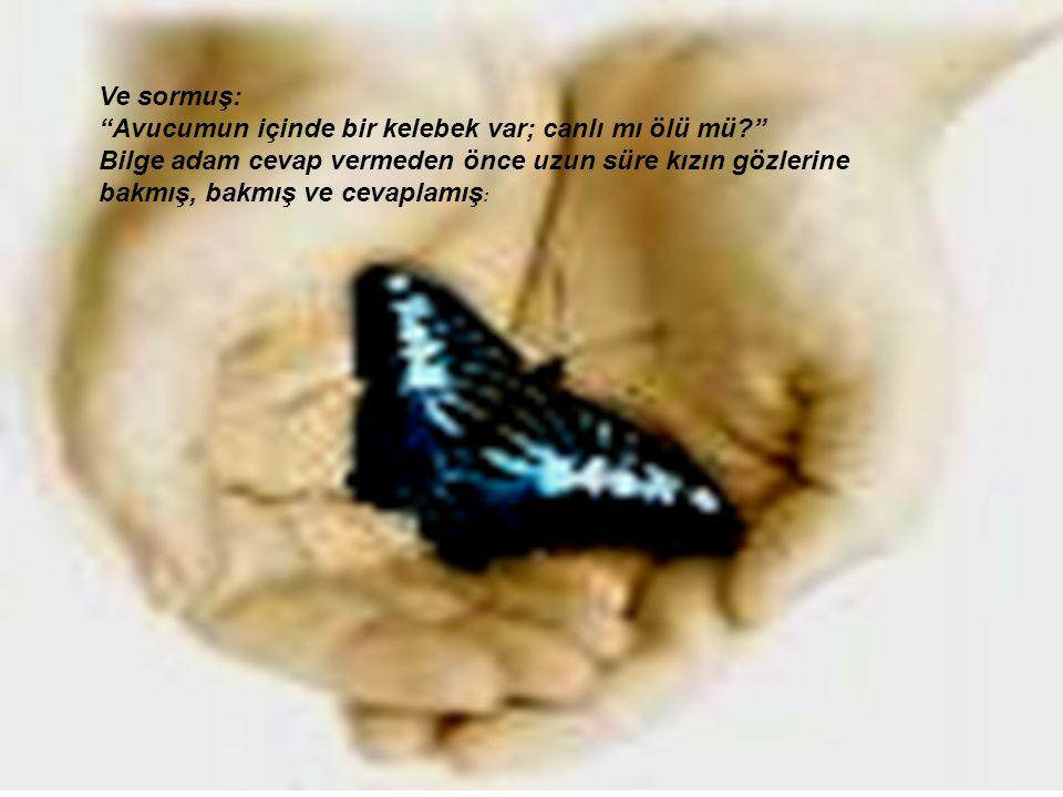 Ve sormuş: Avucumun içinde bir kelebek var; canlı mı ölü mü Bilge adam cevap vermeden önce uzun süre kızın gözlerine.