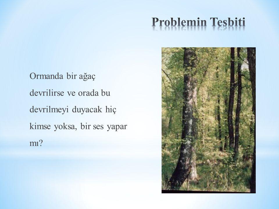 Problemin Tesbiti Ormanda bir ağaç devrilirse ve orada bu devrilmeyi duyacak hiç kimse yoksa, bir ses yapar mı