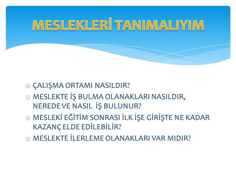 MESLEKLERİ TANIMALIYIM