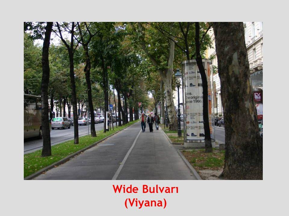 Wide Bulvarı (Viyana)