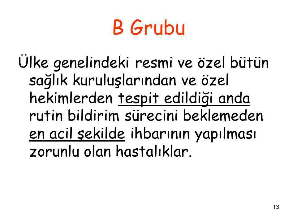 B Grubu
