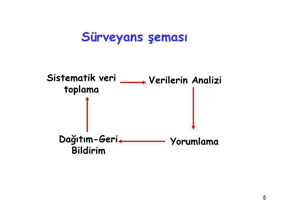 Sistematik veri toplama Dağıtım-Geri Bildirim