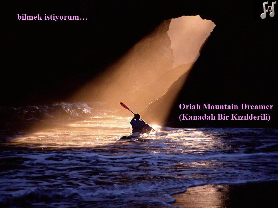 bilmek istiyorum… Oriah Mountain Dreamer (Kanadalı Bir Kızılderili)