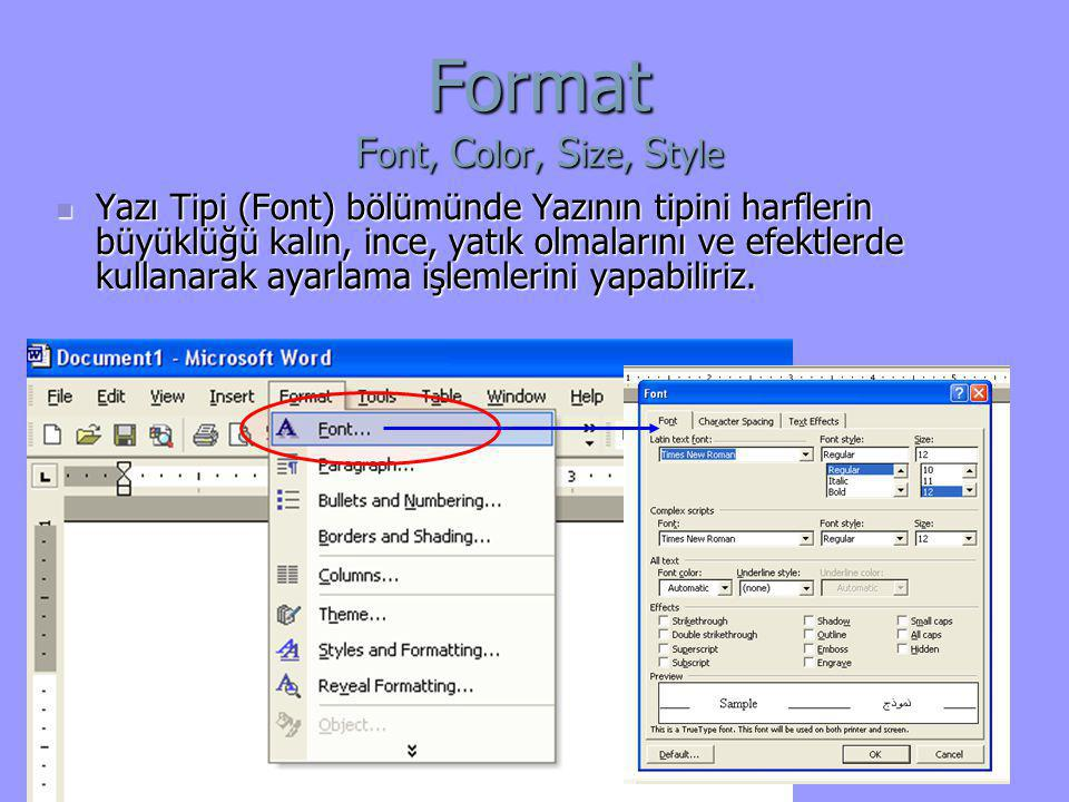 Format Font, Color, Size, Style