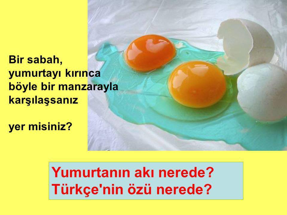 Yumurtanın akı nerede Türkçe nin özü nerede Bir sabah,