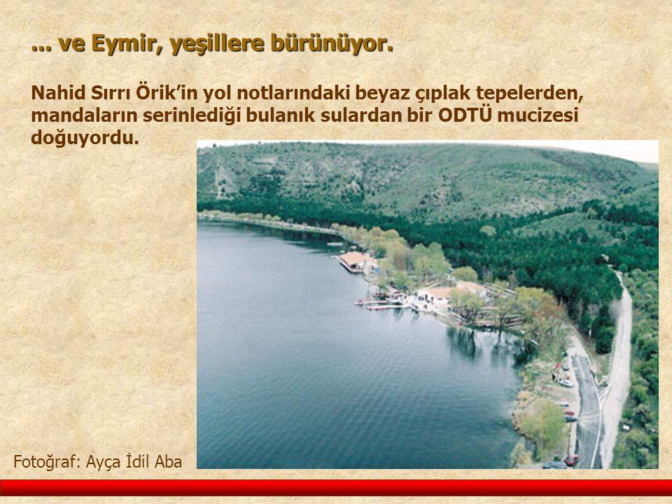 Fotoğraf: Ayça İdil Aba