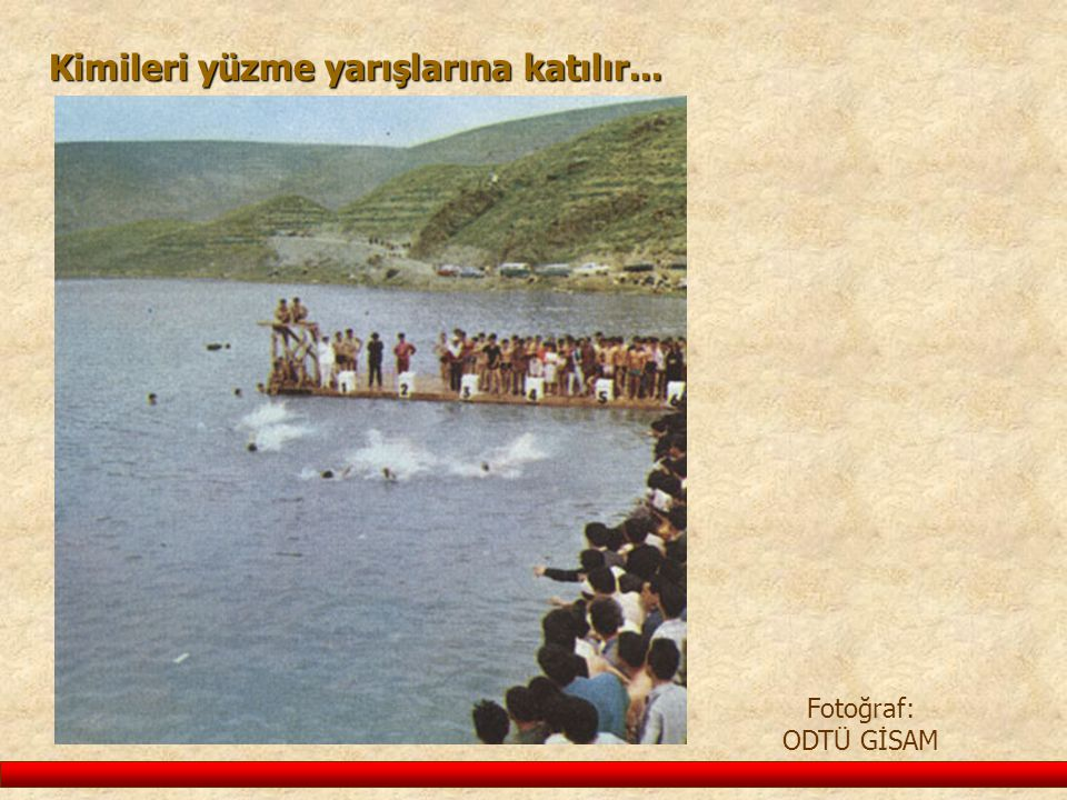 Kimileri yüzme yarışlarına katılır...