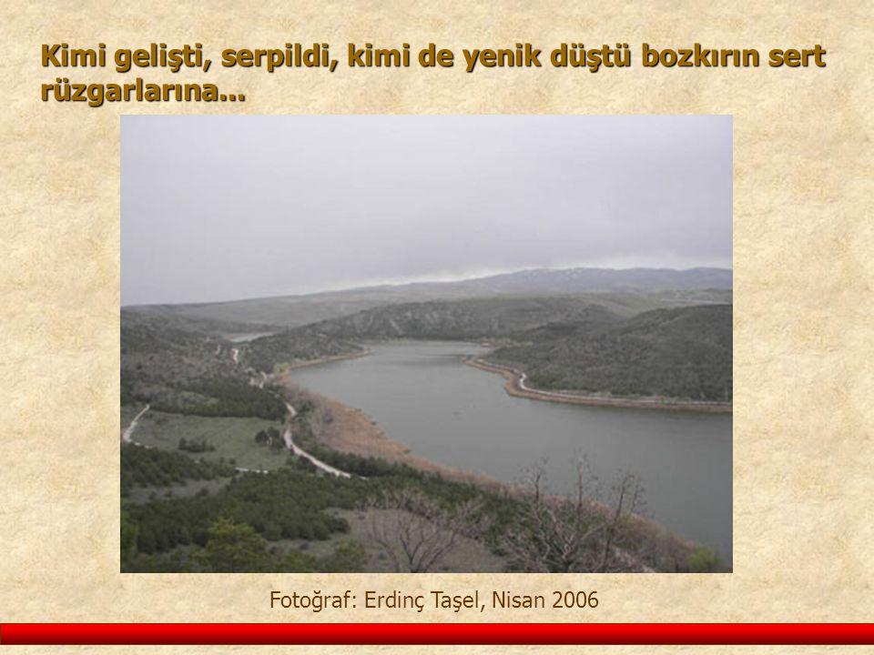 Fotoğraf: Erdinç Taşel, Nisan 2006