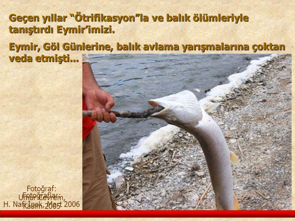 Geçen yıllar Ötrifikasyon la ve balık ölümleriyle tanıştırdı Eymir'imizi.