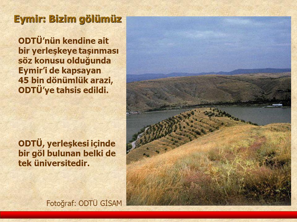 Eymir: Bizim gölümüz