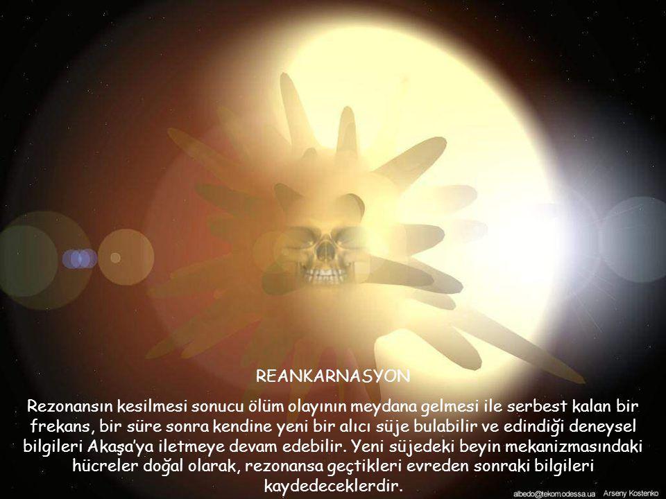 REANKARNASYON