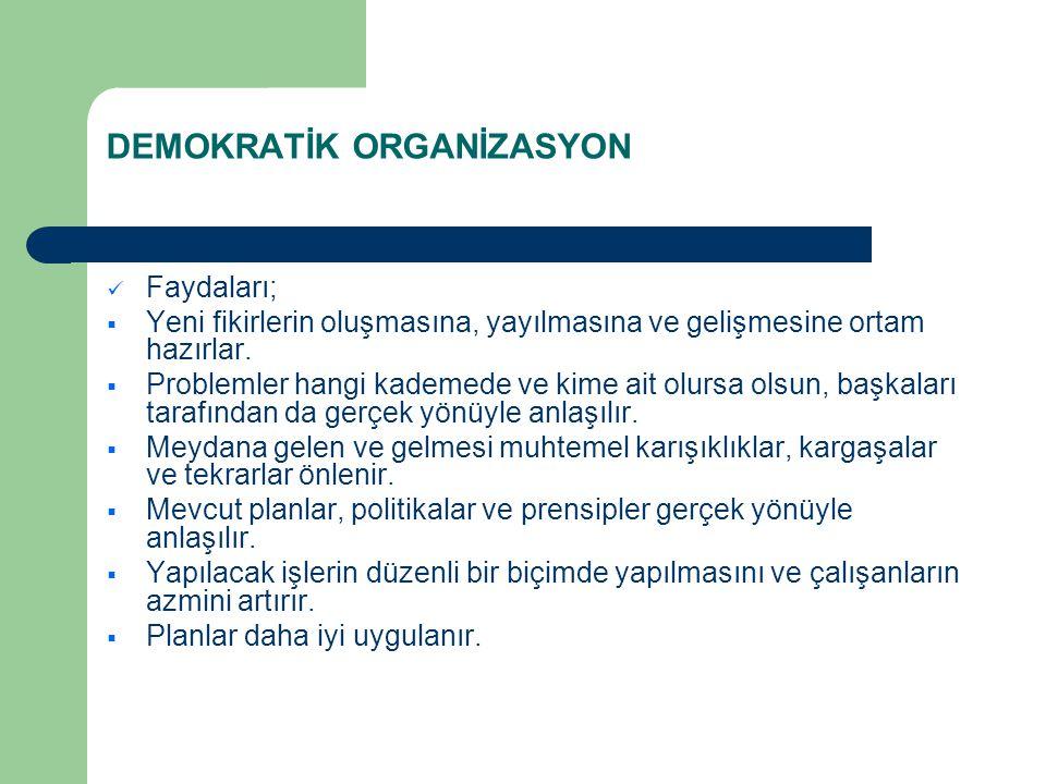 DEMOKRATİK ORGANİZASYON