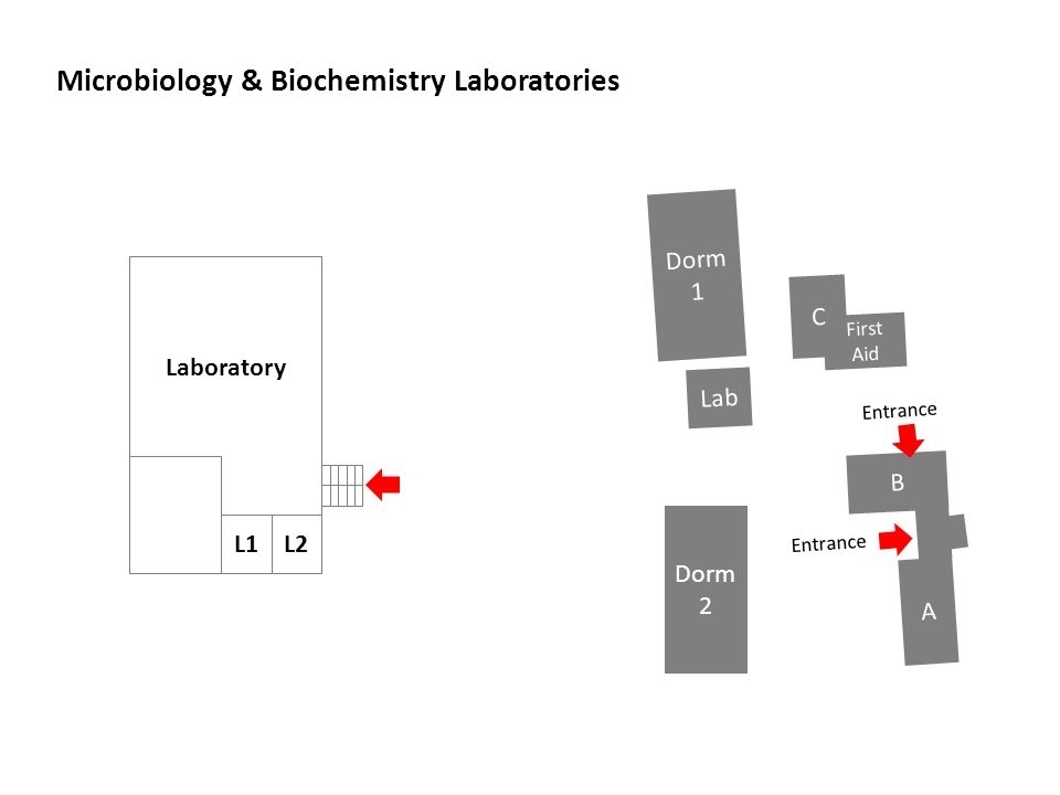 Microbiology & Biochemistry Laboratories