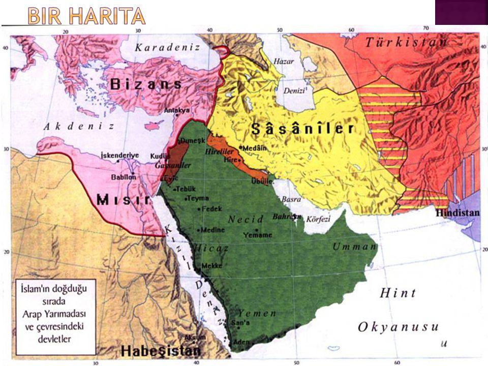 Bir harita