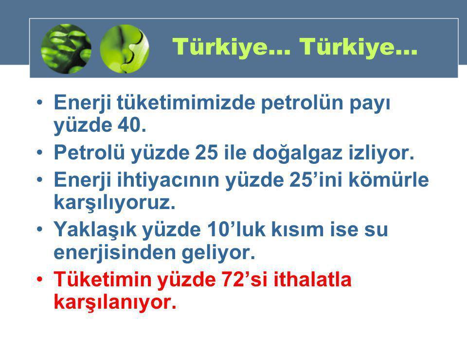 Türkiye… Türkiye… Enerji tüketimimizde petrolün payı yüzde 40.