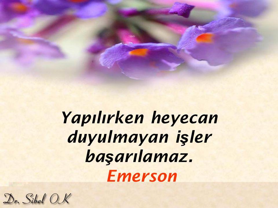 Yapılırken heyecan duyulmayan işler başarılamaz. Emerson