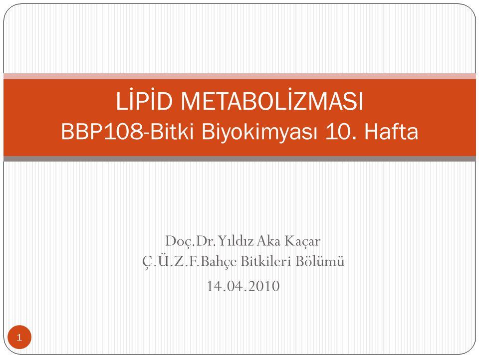 LİPİD METABOLİZMASI BBP108-Bitki Biyokimyası 10. Hafta
