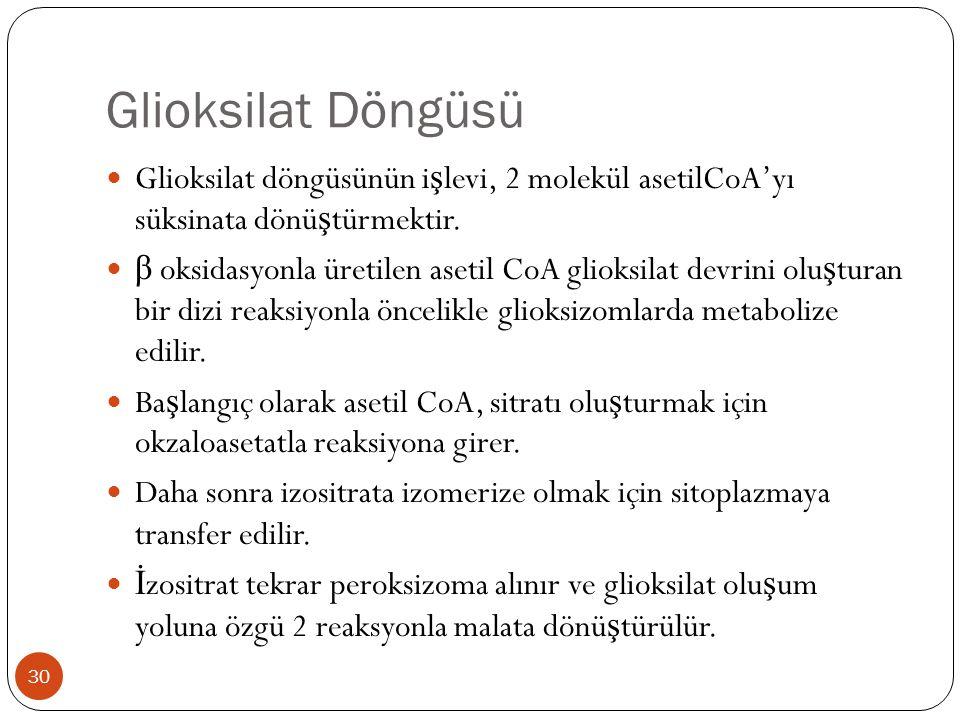 Glioksilat Döngüsü Glioksilat döngüsünün işlevi, 2 molekül asetilCoA'yı süksinata dönüştürmektir.