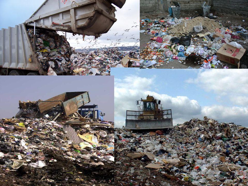 Bir insanın bir yıl boyunca çöpe attığı şeylerin ağırlığı kendi ağırlığının yaklaşık yedi katıdır.