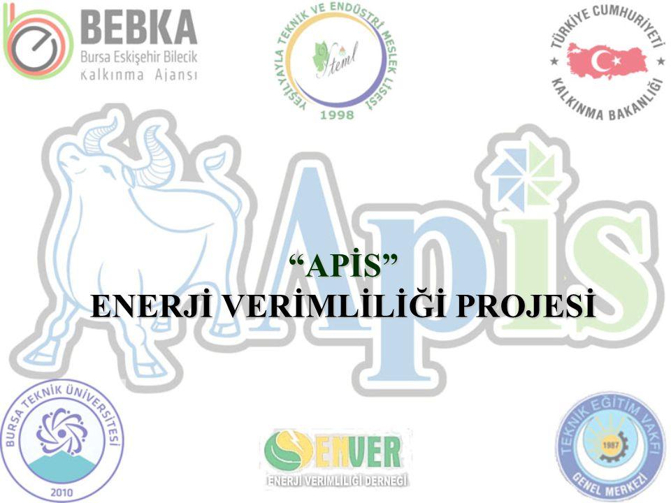 APİS ENERJİ VERİMLİLİĞİ PROJESİ