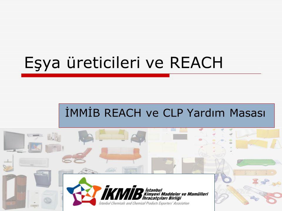 Eşya üreticileri ve REACH