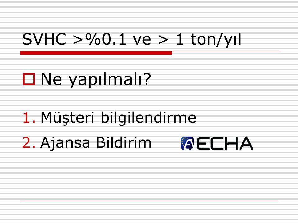 SVHC >%0.1 ve > 1 ton/yıl