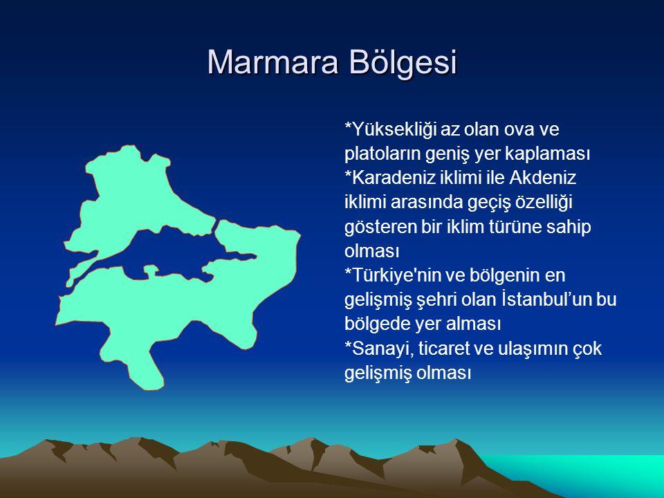 Marmara Bölgesi *Yüksekliği az olan ova ve