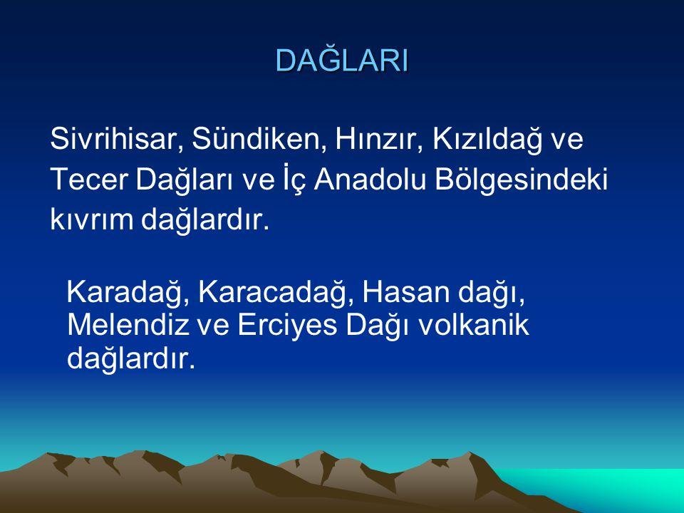 DAĞLARI Sivrihisar, Sündiken, Hınzır, Kızıldağ ve. Tecer Dağları ve İç Anadolu Bölgesindeki. kıvrım dağlardır.