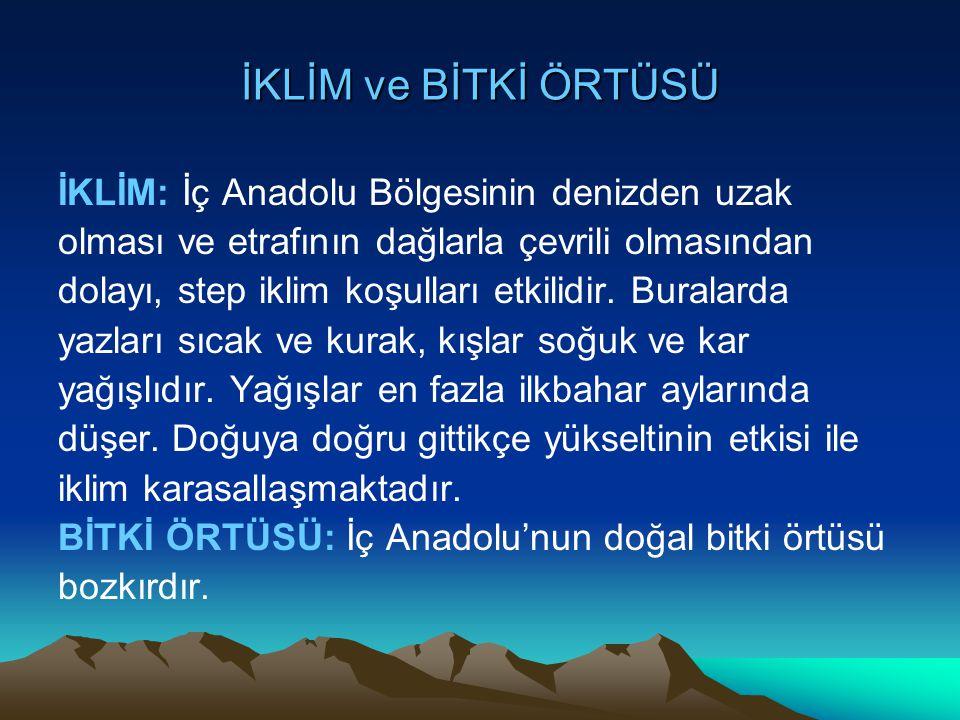 İKLİM ve BİTKİ ÖRTÜSÜ İKLİM: İç Anadolu Bölgesinin denizden uzak