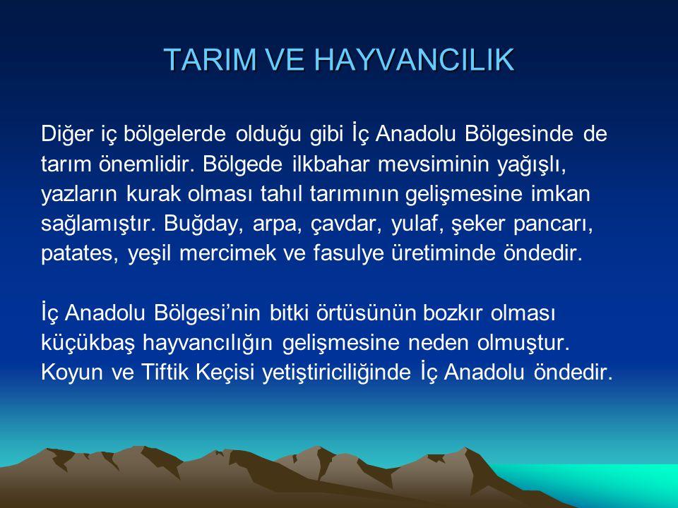 TARIM VE HAYVANCILIK Diğer iç bölgelerde olduğu gibi İç Anadolu Bölgesinde de. tarım önemlidir. Bölgede ilkbahar mevsiminin yağışlı,