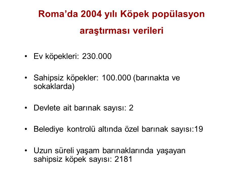 Roma'da 2004 yılı Köpek popülasyon araştırması verileri