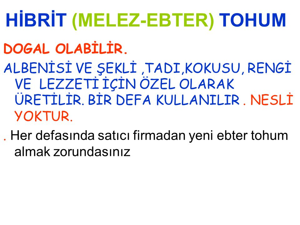 HİBRİT (MELEZ-EBTER) TOHUM